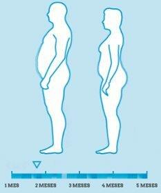 Gráfica sobre el efecto de PhenQ en una persona desde el primero hasta el quinto mes